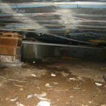 moldy-crawl-space-under-the-house