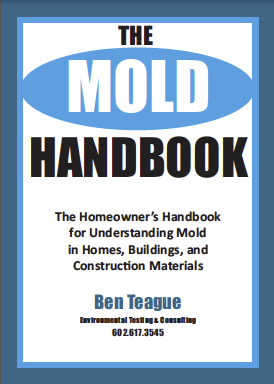 Mold book cover